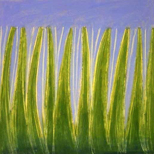 tallgrass3